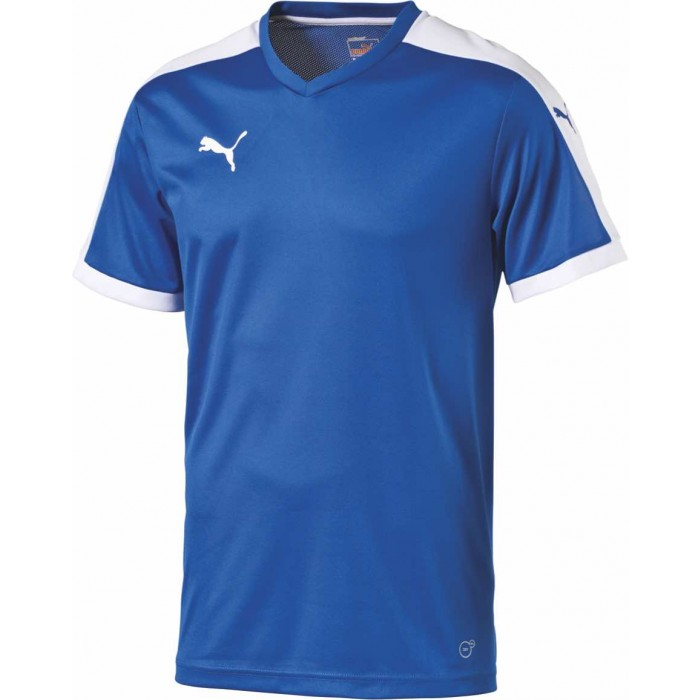 Puma Pitch T-shirt Blå